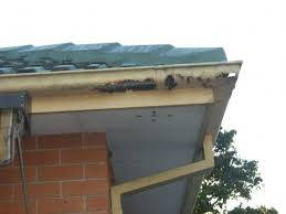 b2ap3_thumbnail_rusted-roof-gutters-2.jpg